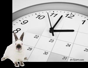 CA-rabbit clock
